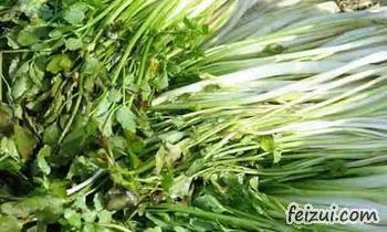 桐城水芹菜