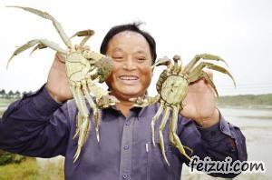 黄陂湖大闸蟹