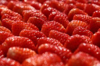 泗县墩集草莓