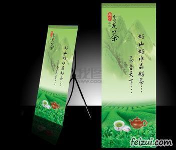 寿宁高山乌龙茶
