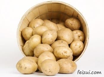 渭源马铃薯种薯