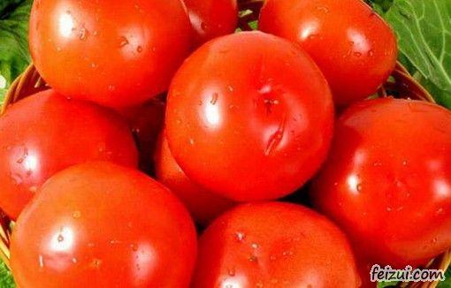 永靖刘家峡西红柿