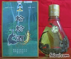 大新蛤蚧酒
