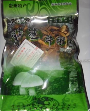 松桃牛肝菌