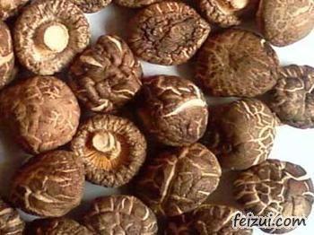 鹤岗东北香菇