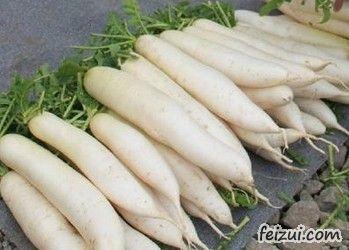 利川天上坪白萝卜