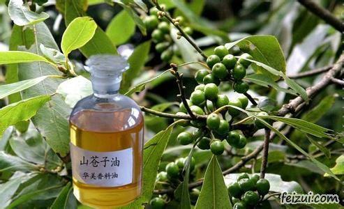 永州山苍子油