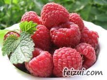 东陵红树莓
