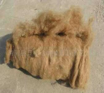 阿拉善驼绒