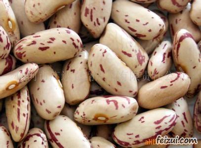 呼伦贝尔芸豆