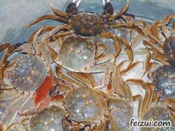 黄河口大闸蟹