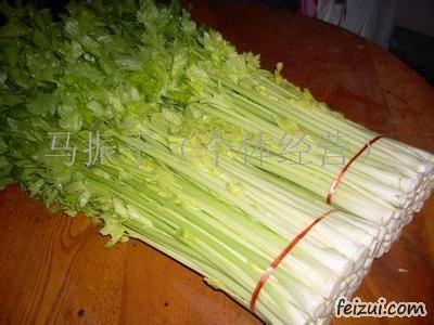 马家沟芹菜