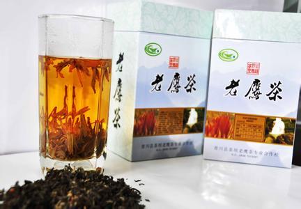 金口河老鹰茶