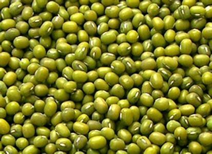 兴县大明绿豆