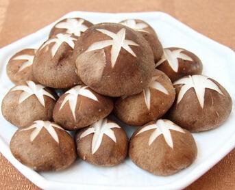 皇姑山蘑菇