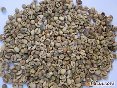 思茅小粒种咖啡