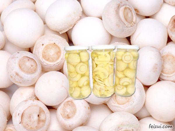 嘉善姚庄蘑菇