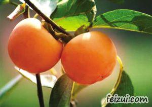 兰溪大红柿