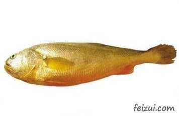 象山大黄鱼