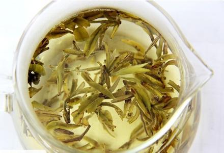 平阳黄汤茶