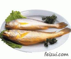 舟山大黄鱼